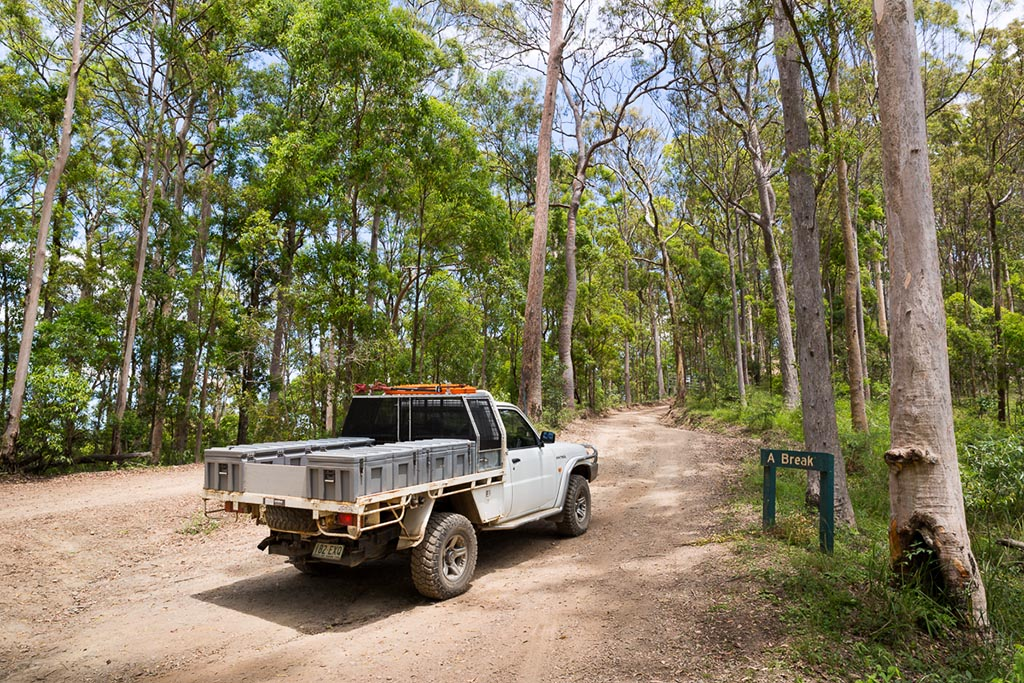 A Break track, D'Aguilar National Park 4WD TRACKS BRISBANE