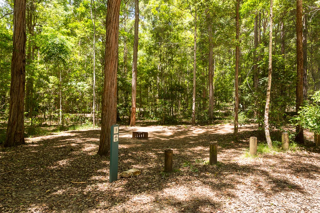 Campsite at Archer Camping Area 4WD Tracks Brisbane