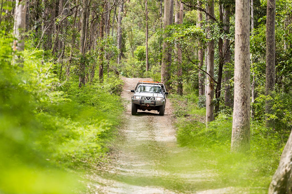 Driving along A Break track, D'Aguilar National Park 4WD TRACKS BRISBANE