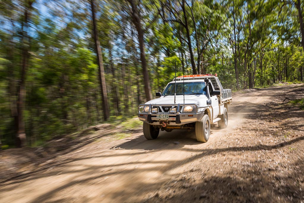 Forest track through D'Aguilar National Park 4WD TRACKS BRISBANE