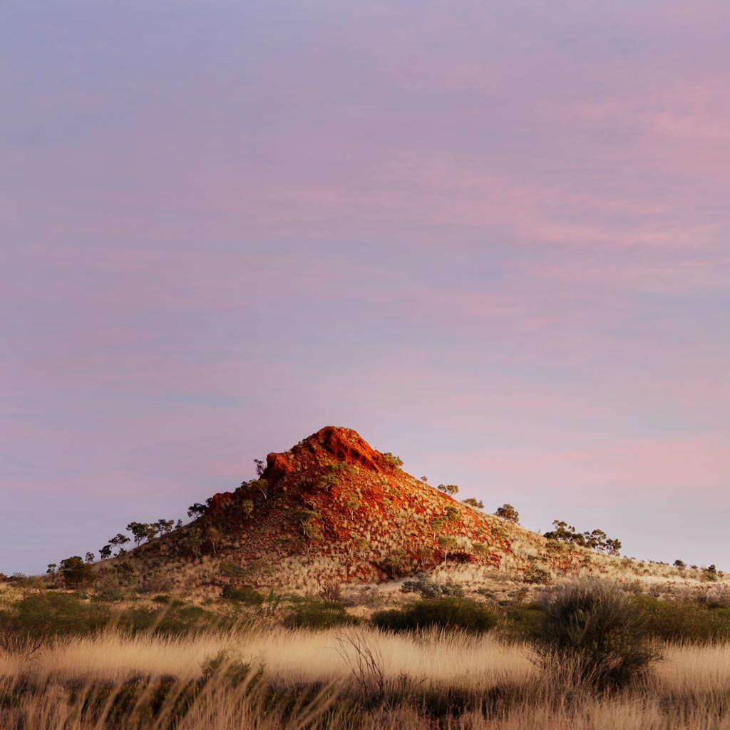 Sunrise in Karlamilyi National Park, Pilbara Region