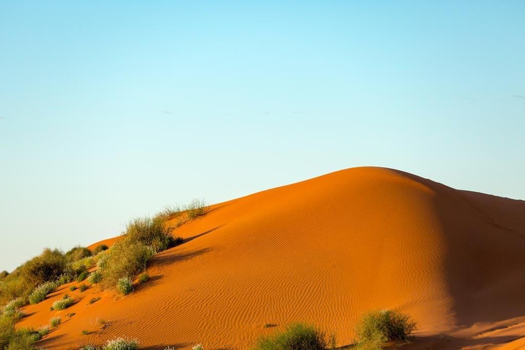 Big Red sand dune in the Simpson Desert at Sunrise
