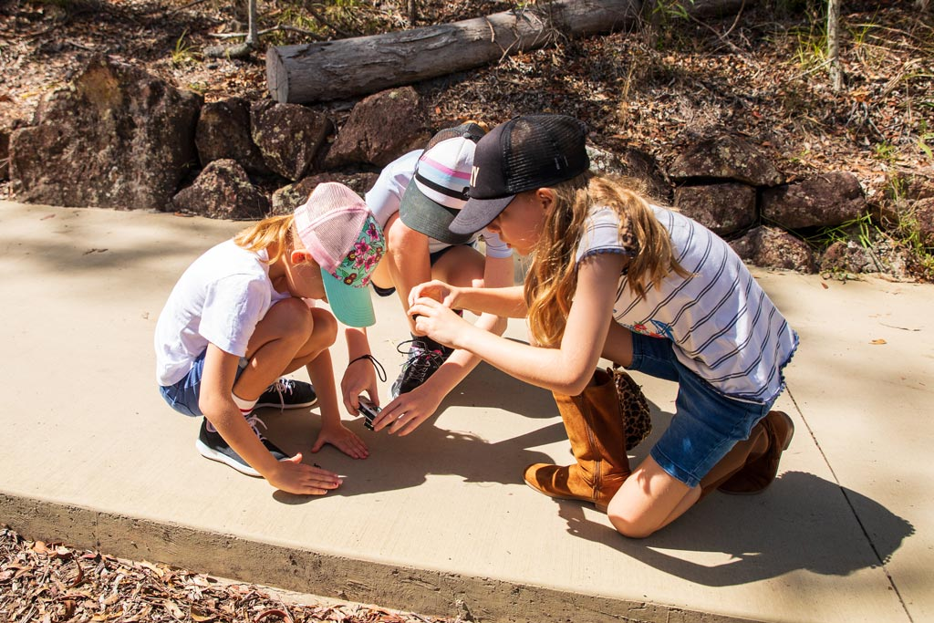 Three young girls taking a picture of a lizard on a path - Photography for Kids