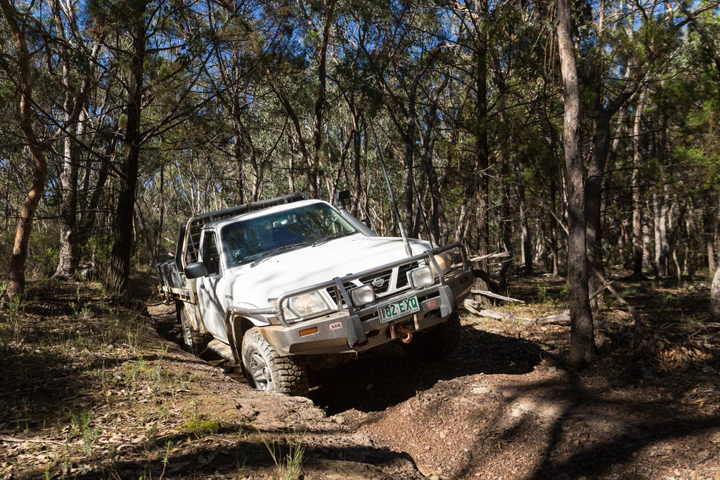 4WD on rutted track in Sundown National Park