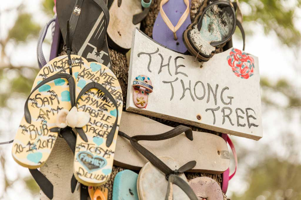 Thongs nailed to a tree