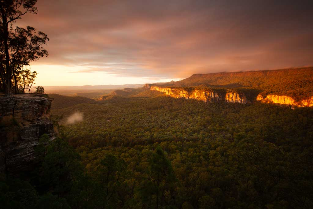Sunrise at Boolimba Bluff, Carnarvon Gorge - Carnarvon Gorge Walking Tracks
