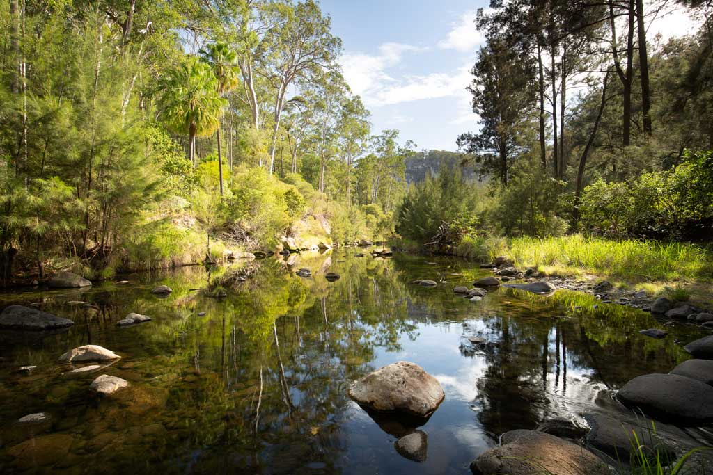 Early morning reflections in Carnarvon Creek