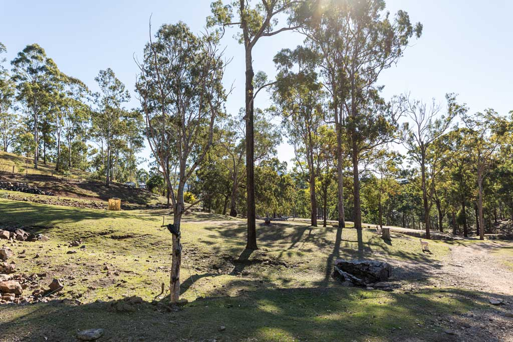 Tiered camp sites