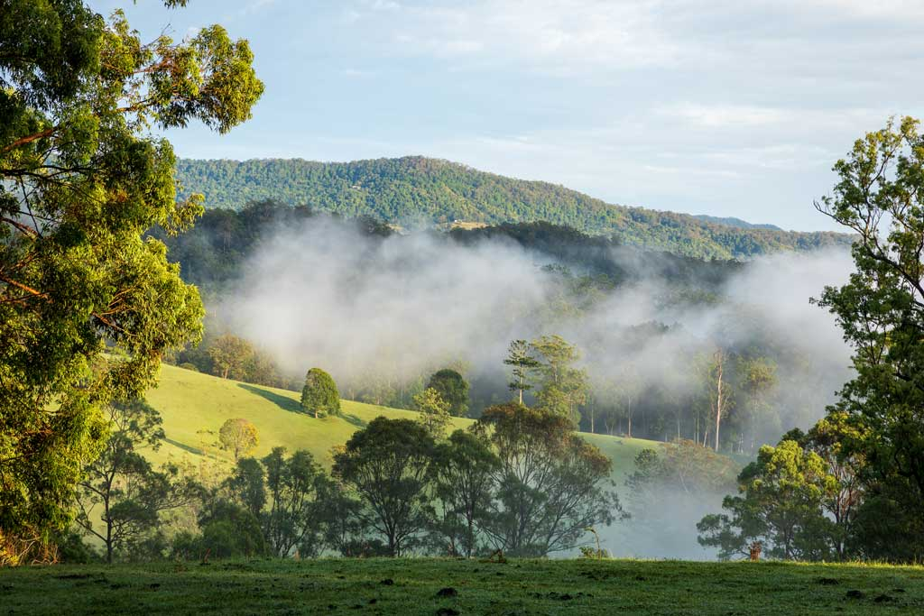 low clouds hang in the valley in the early morning light